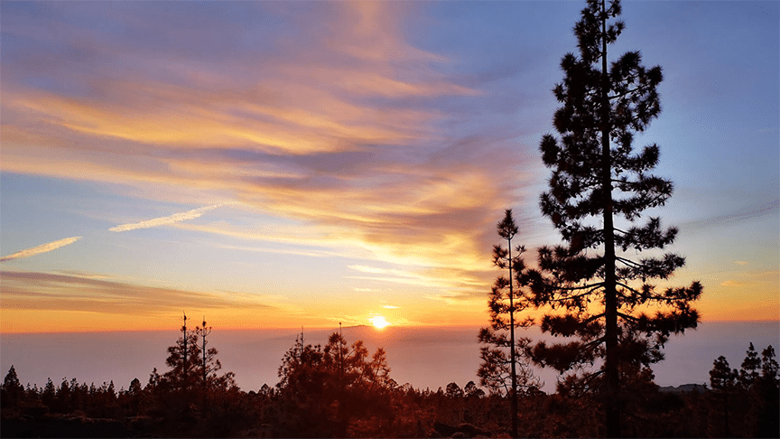 Teide Sunset Tour